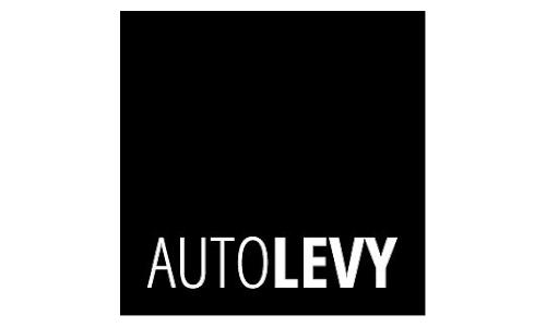 Auto Levy - Logo