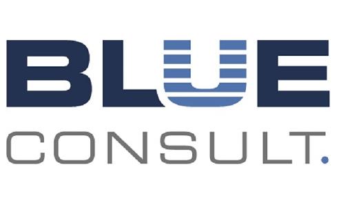 BLUE Consult - logo